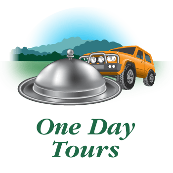 4WD day tours with meals provided